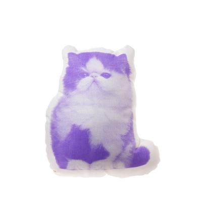 Fauna Persisk Kat fra Areaware, formgivet af Ross Menuez. Sød pude med kat på. Puden er fremstillet af økologisk bomuld og fyldt med polyester.