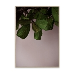 Green Leaves plakat 40x30